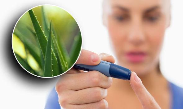 Aloe Vera in Diabetes