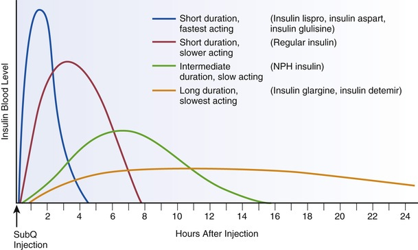 Insulin Action Graph