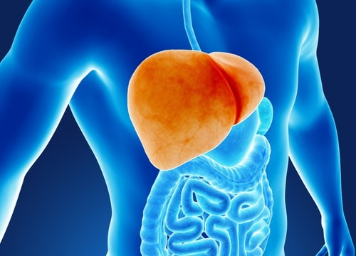 How does Diabetes Affect your Liver